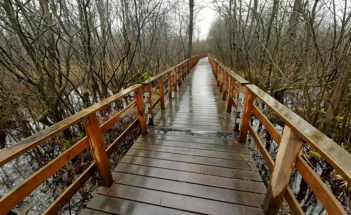 Wandern im Dauerregen