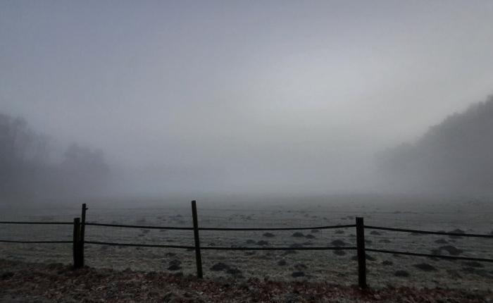 Ein ruhiger Tag: Nebel undKochen